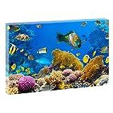 Korallen und Fische | V1720210 | Bilder auf Leinwand | Wandbild im XXL Format | Kunstdruck in 120 cm x 80 cm | Bild Tauchen Unterwasserwelt Schnorcheln
