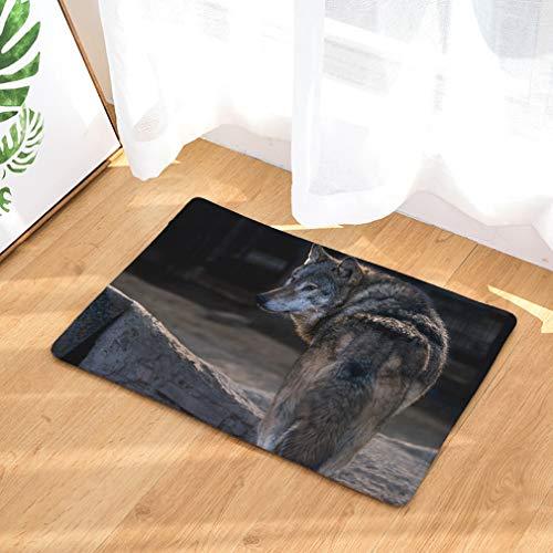 Baisheng Doormat Universel De Porte Tapis Absorbant d'eau Anti Dossier Tapis De Sol en Plein Air Intérieur Durable Lavable Tapis De Noël (Loup des neiges 19-19.6 * 31.5inch /50 * 80cm)