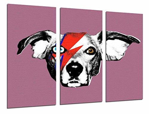 Cuadros Camara Poster Moderno Fotografico David Bowie, Animal Perro con Relampago, Rock,...