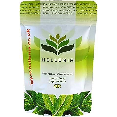 Extracot de Ginkgo Biloba 120 mg (24% Ginkgo Flavonglycosides) - 360 Cápsulas