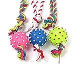 Mein Ji Spielzeug Beißring mit Geräuschen für Hunde, Spielzeug für Haustiere, aus Gummi, robust, mit Baumwollseil für Hunde (Ball/Zufall)