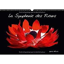 La Symphonie Des Fleurs 2017: Venez Decouvrir Mon Univers Graphique Et Colore, Charge De Sensations Visuelles.