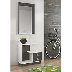 Mueble de recibidor Moderno Color Blanco/Grafito