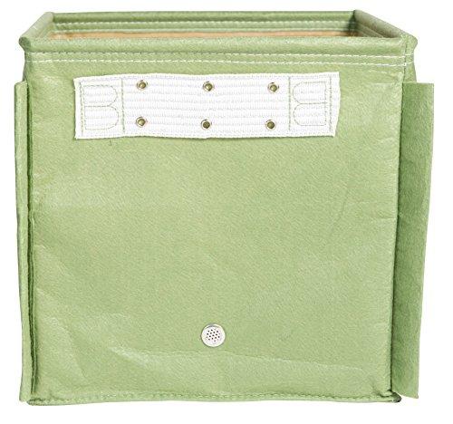 Bloem Universal Staking Kit für Tomaten- oder Pfeffer-Pflanzbeutel, Grün - Hochbeet-anschlüsse