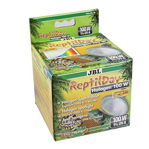 JBL ReptilDay Halogen 61844 Halogen-Spotstrahler mit Tageslicht-Vollspektrum, E27, 100 W