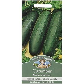 Cucumber Marketmore 76-25 Seeds Mr Fothergills Vegetable