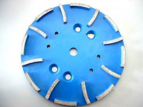 Gowe 25,4cm Diamant Schleifteller Kopf für EDCO blastrac SPE-Beton Boden Schleifen Maschine | 250mm Schleifmop Teller | 16Segmente (Boden Beton Schleifen)