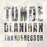 Songtexte von Tunde Olaniran - Transgressor