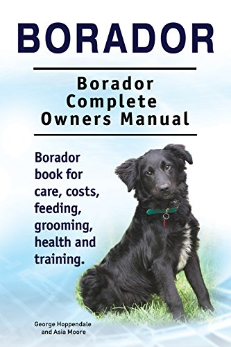Borador Dog Borador Dog Book For Costs Care Feeding Grooming