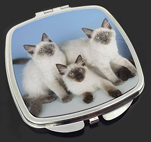Ragdoll Kätzchen Make-up Taschenspiegel (Up Ragdoll Make)
