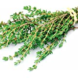 Go Green Thyme Flower Seeds (Pack of 30 seeds)