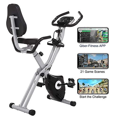 Profun Bicicleta Estática 2 en 1 Plegable Xbike de Fitness con Respaldo/Bandas de Brazo/Monitor/App 10 Niveles Resistencia Magnética Ajustable para Ejercicio Entrenamiento en Casa, Gris