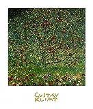 1art1 35520 Gustav Klimt - Der Apfelbaum III Poster Kunstdruck 30 x 24 cm