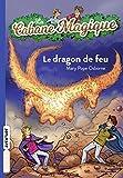 le dragon d'or - Cabane magique 50