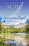 Front cover for the book Summer Angel (Northstar Angels Book 2) by Suzie O'Connell