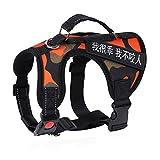 Hundegeschirr, Harness, Medium, Large, Straps, Halsband, Explosionsgeschützt, Pet Supplies (Farbe : Tarnung, größe : XL)