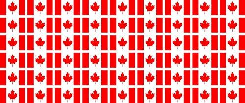 Mini Fahnen / Flaggen Set glatt - 20x12mm - selbstklebender Aufkleber - Kanada - Sticker fürs Büro, Schule und zu Hause - 54 Stück (Kanada Aufkleber)