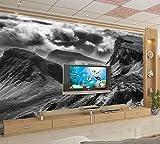 Schwarz Und Weiß Alpine Grey Hintergrund Wand Tapete Hd 3D Wallpaper Study Wandbild Hotel Schlafzimmer Wallpaper Benutzerdefinierte Größe Seidenstoff Material Wapel 310X200Cm(122.05X78.74 In)