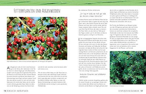 Der Bio-Kräutergarten der Kräuter-Liesel: Anbau – Pflege – Ernte - 7