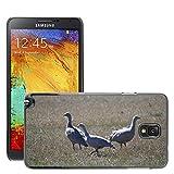 Grand Phone Cases Bild Hart Handy Schwarz Schutz Case Cover Schale Etui // M00141005 Cape Barren Gänse Gänse Tier // Samsung Galaxy Note 3 III N9000 N9002 N9005