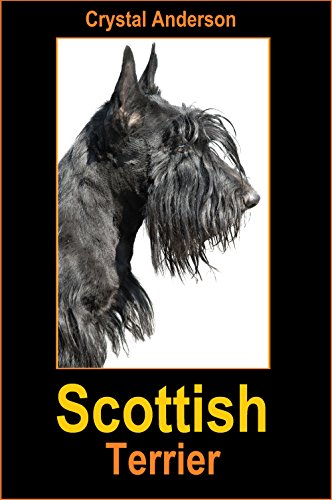 Scottish Terrier: How to Own, Train and Care for Your Scottish Terrier (English Edition) -