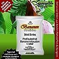 Bananenerde Strelizien Erde - 5 Ltr. PROFI LINIE Substrate - Blumenerde von GREEN24 auf Du und dein Garten