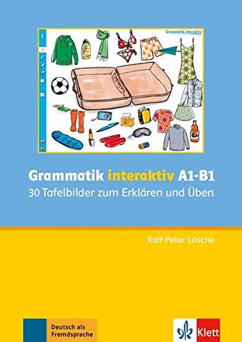 Grammatik interaktiv A1-B1: CD-ROM