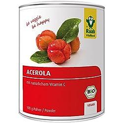 Raab Vitalfood Bio Acerola-Pulver, hochdosiert mit 17 % natürlichem Vitamin C, laborgeprüft, vegan, Acerola-Extrakt, Acerola-Kirsche, 1-er Pack (1 x 100 g)