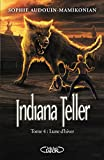 indiana teller t04 lune d hiver
