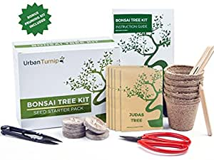 Bonsai Tree Kit Grow Your Own Bonsai Trees from Seeds - Gardening Gift Set Includes 5 Tree Species to Plant - Indoor Growing with Bonus Bonsai Tools Included