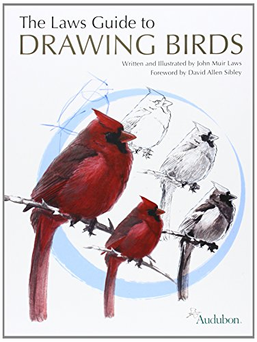 The Laws Guide to Drawing Birds por John Muir Laws