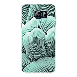 Stylish Shell of Ocean Back Case Cover for Galaxy Note 5