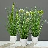 Klocke Dekorationsbedarf Kunstpflanze - Gras im Topf - 3 Stück - Höhe: 36cm - Farbe: Grün - Kunstgras/Tischdeko