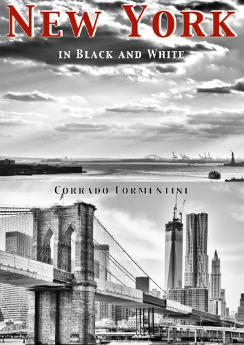 New York in black and white (English Edition)