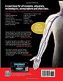 Image de Inside Ultrasound: Vascular Reference Guide