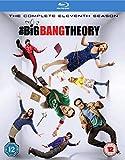 Big Bang Theory S11 [Edizione: Regno Unito] [Blu-ray] [Import italien]