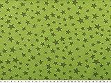 Baumwoll-Jersey, Sterne, maigrün, 150cm