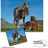 Set Regalo: 1 Póster Impresión Artística (80x60 cm) + 1 Alfombrilla Para Ratón (23x19 cm) - Caballos, Ponis Pottoka En El Pais Vasco