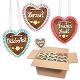 20x Lebkuchen Herz im Mischkarton 10cm - Premiumqualität - versch. bayerische Sprüche | saftigte Lebkuchenherzen frisch gebacken | Oktoberfest Lebkuchenherzen bestellen von LEBKUCHEN WELT