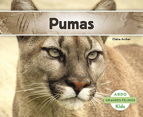 Pumas (Abdo Kids: Grandes Felinos)