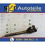 Bosch einspritzdüse instandgesetzt 0445110369, 0986435166