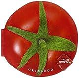 Pomodoro. Ricette magnetiche