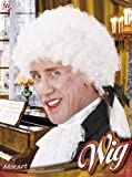 Perruque Mozart - Homme - Taille Unique
