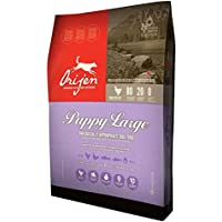 Orijen Puppy Large - Sacco da 13 kg