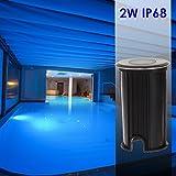 Wisdom line Faretto LED segnapasso 2w ad Immersione ip68 per Piscina Giardini camminamenti Luce Blu