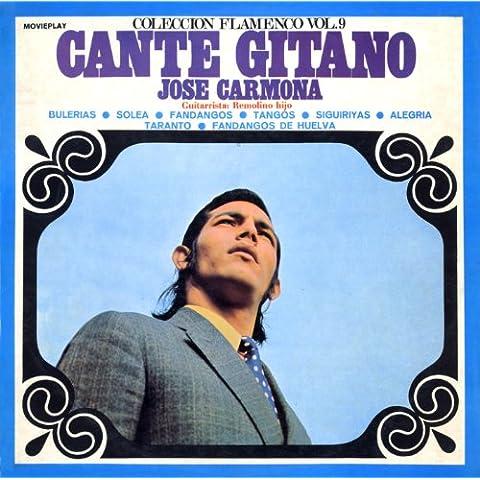 Cante Gitano. Colección Flamenco, Vol. 9