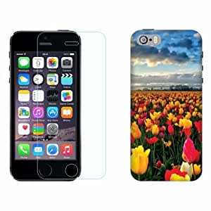 Printland Tempered Glass + Back Cover Combo For Apple Iphone 5S