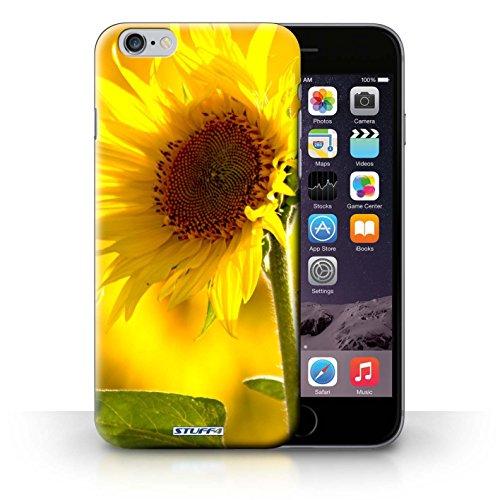 Kobalt® Imprimé Etui / Coque pour iPhone 6+/Plus 5.5 / Doux Rose conception / Série floral Fleurs Fleur jaune