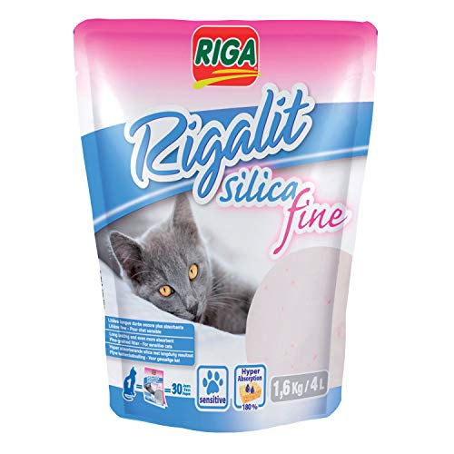 Dishes, Feeders & Fountains Filtre Fontaine À Eau Pour Chat Paquet De 6 F Flight Tracker Katze-tatze Filtre Fontaine Chat