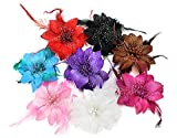 BONAMART 8 Stück Haarclip Haarklipp Blumen Haarklammer Haarspange Ansteckblume Brosche Feder
